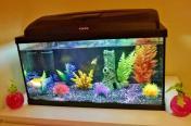 Aquael fish tank 55 l , akwarium 55